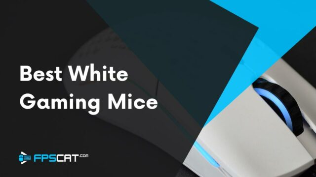 Best White Gaming Mouse (Our Top 5)